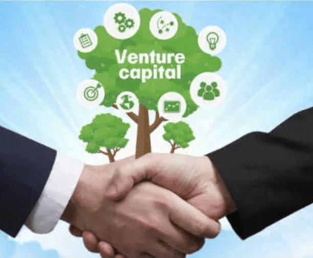 Jenis-Jenis Perusahaan Modal Ventura