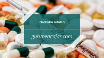 Jenis Jenis Narkoba, Dampak Dan Pengertiannya
