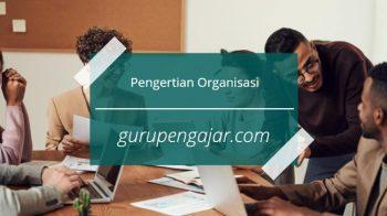 Apa Itu Organisasi : Pengertian, Tujuan Dan Unsur